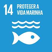 ods 14 objetivo do desenvolvimento sustentavel 14