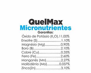 Quelmax-Micronutrientes.png