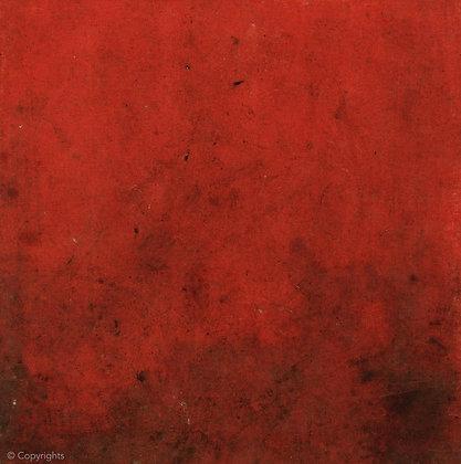 TOILE GARAGE ROUGE  ( Red canvas garage )