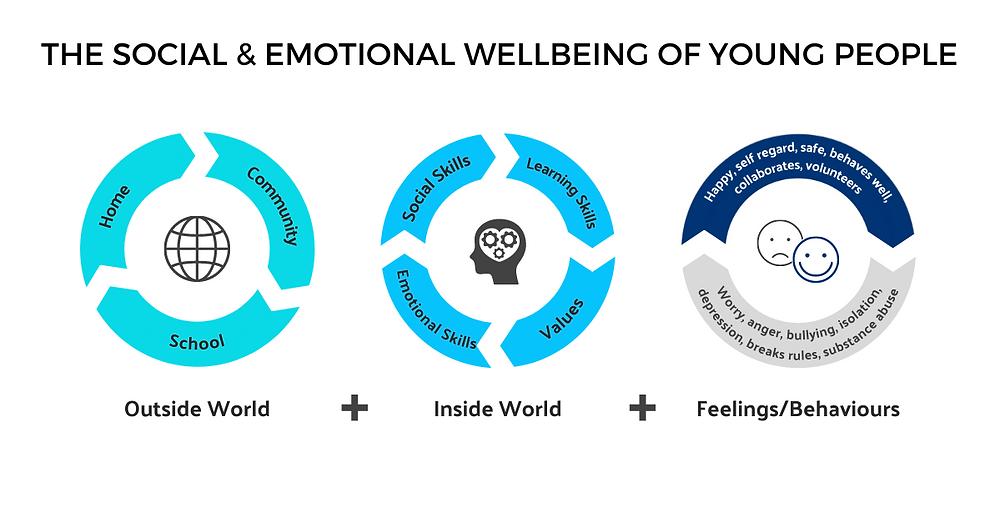 The social emotional wellbeing of young people