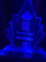 awesome award.jpg