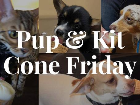 Puppy & Kitty Fro-Yo Time