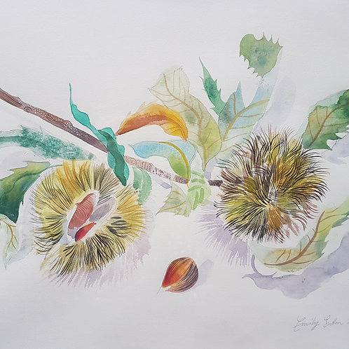 'Venice Chestnut' by Emily Sutton