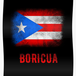Boricua Flag 020