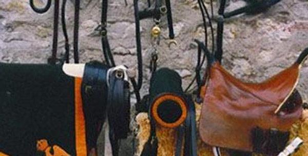 Schabraque de Chasseur àCheval de la Garde Impériale, troupe