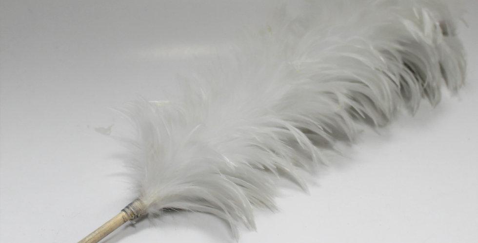 Plumet blanc