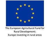 EU Logo - White.png