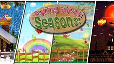 Flying Birds Seasons