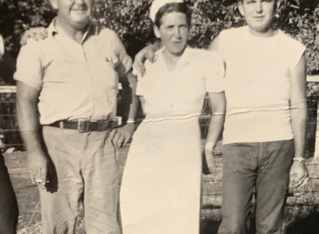 The Stories Found in Census Records