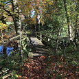 BRIDGE AUTUMN COLOURS DUNDERRY.HEIC