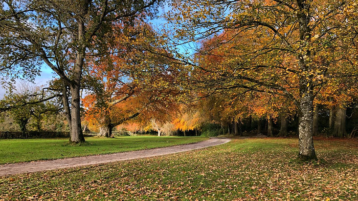 AUTUMN%20DUNDERRY%20PARK%20FROM%20GATE_e