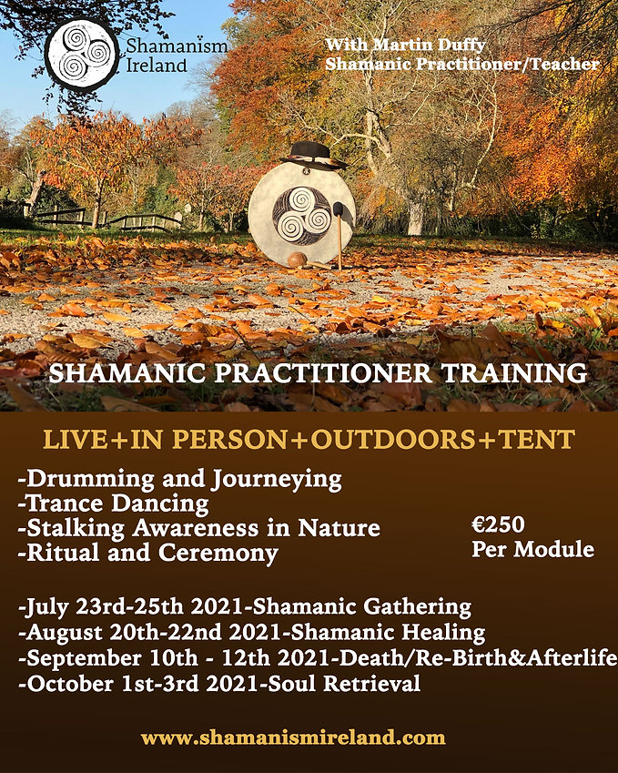 SHAMANIC PRACTITIONERS COURSE POSTER