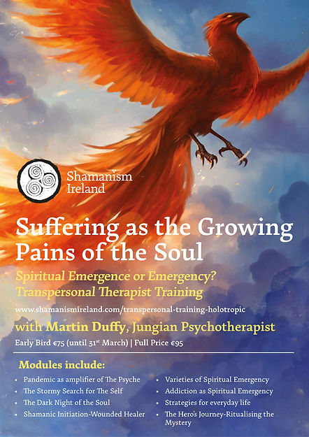 TRANSPERSONAL THERAPIST TRAINING BROCHURE 2