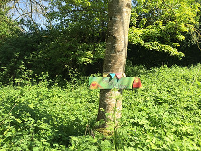 FAIRY SIGN AT CELTIC SHAMANISM
