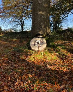 DRUM UNDER TREE.JPG