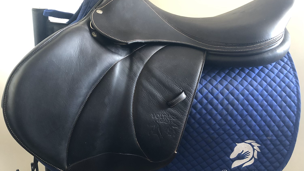 "19"" Voltaire Stuttgart saddle - 2017 - 2AAR - 4.5"" dot to dot"