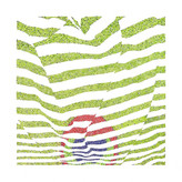 Peacock Stripes