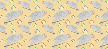I Love Parrots