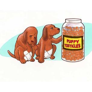 random-art-30-pup-testicles.jpg