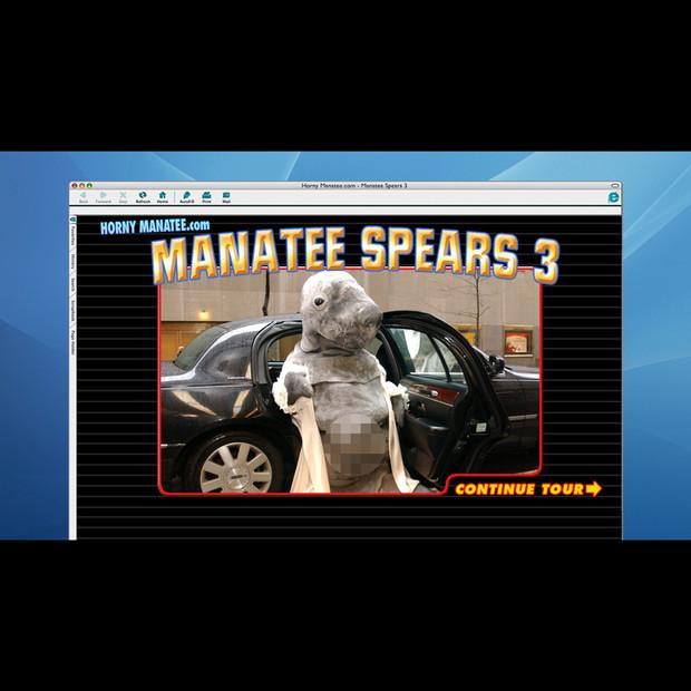 Horny Manatee Website: Manatee Spears