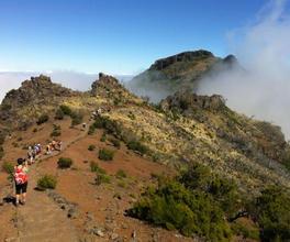 Singlereise nach Madeira   Gemeinsam mit Freunden urlauben
