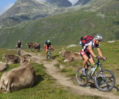 Mountainbikeurlaub Trans Alp