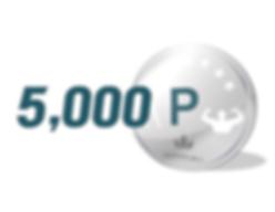 5000포인트.png
