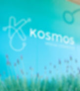 Kosmos-29.jpg