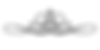 логотип весь.png
