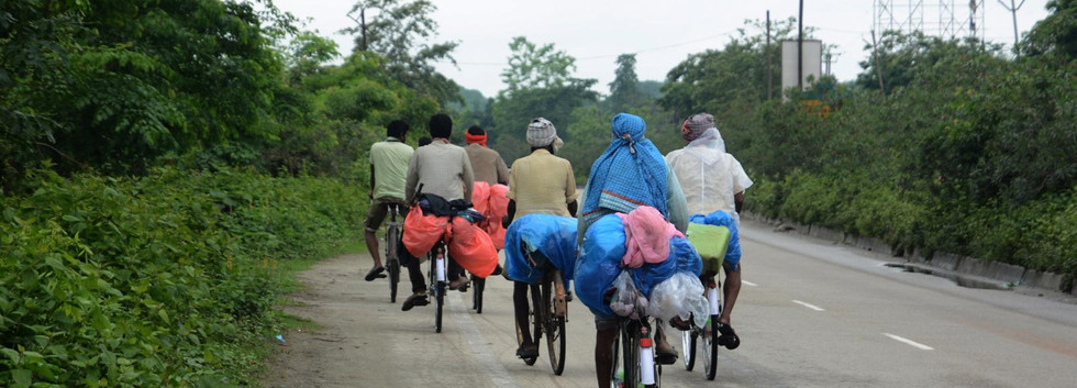 Workers on bicycles on their way to their native places in Bihar from Golaghat district, at Nalbari district of Assam, May 24. EPA