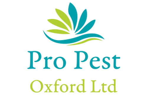 propestoxford Services