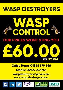 WaspDestroyers.jpg