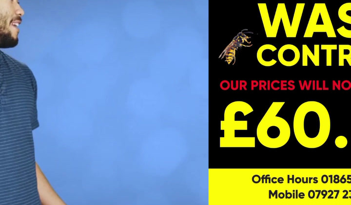 Wasp Nest Removal Oxford