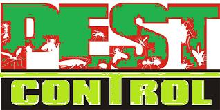 pest control 5.png
