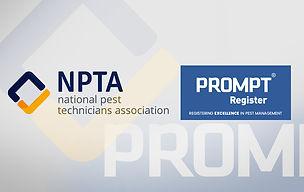 NPTA-BASIS-NewsDesk-FEB_2019-1070x675px.jpg