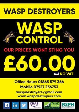 Pro_PEST_CONTROL_Wasps_A5_Leaflet.jpg