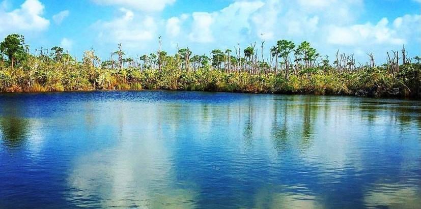Go Big or Go Home: A Trip to The Florida Keys