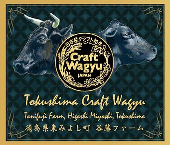 Tokushima CW.png