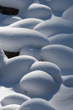 Snow pillows Lamar River