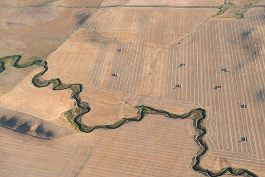 Farmlands central Montana
