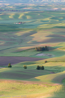 Spring sunrise over the Palouse