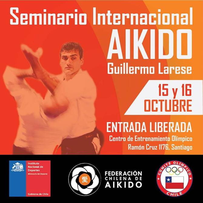 Seminario Internacional de Aikido con Guillermo Larese