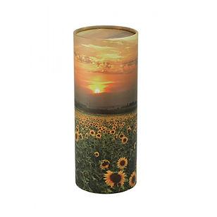 tester-and-jones-sunflower-scatter-tube.