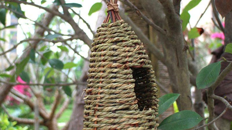 Hanging Bird House Natural Fiber Finch Bird Nest