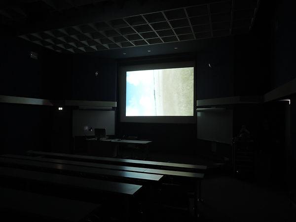 Séance n°1 (特定の空間に準ずる映像作品).JPG