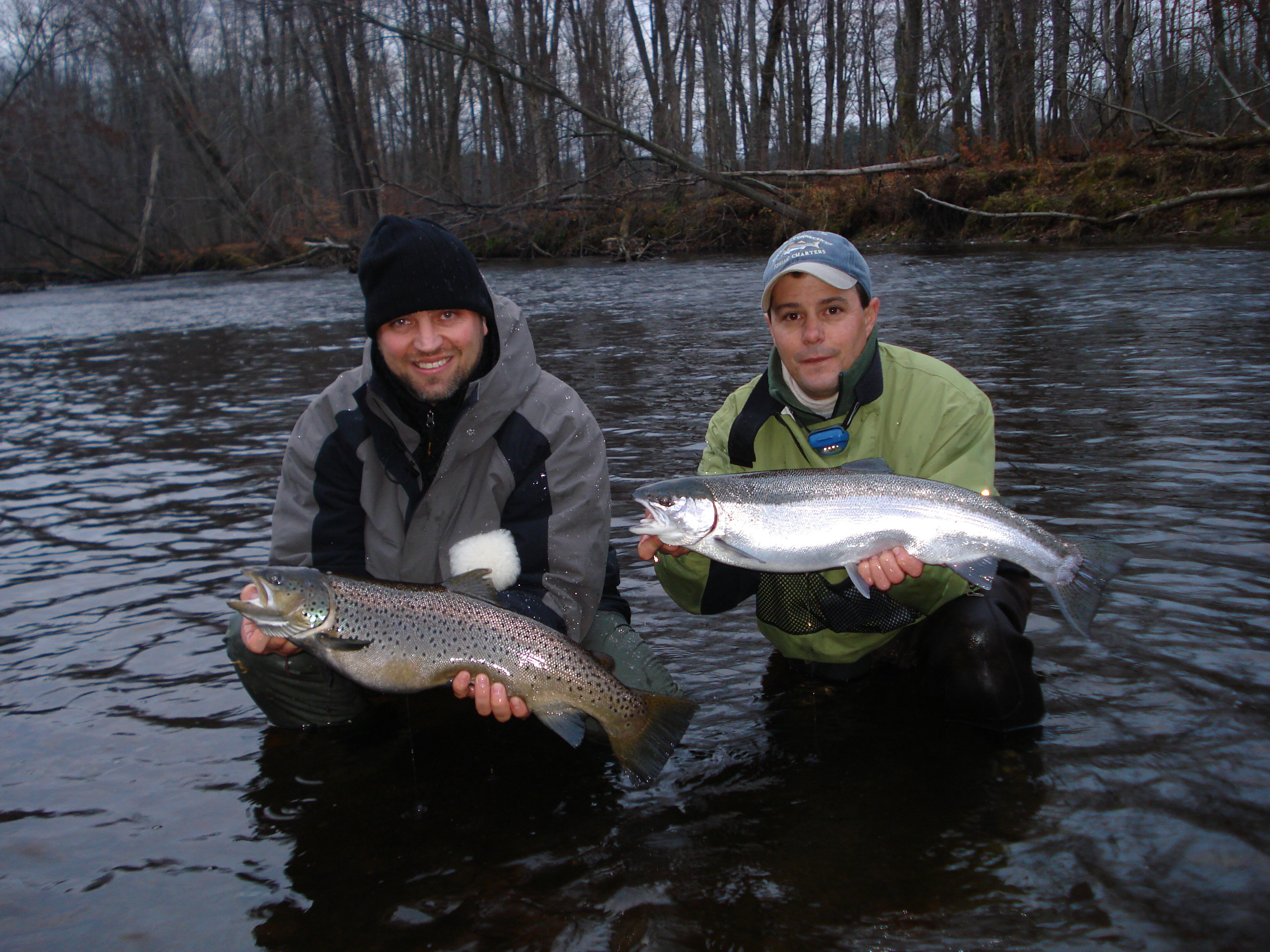 Brown Trout & Steelhead