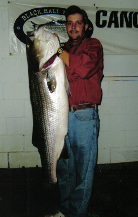 53 Lb Striped Bass