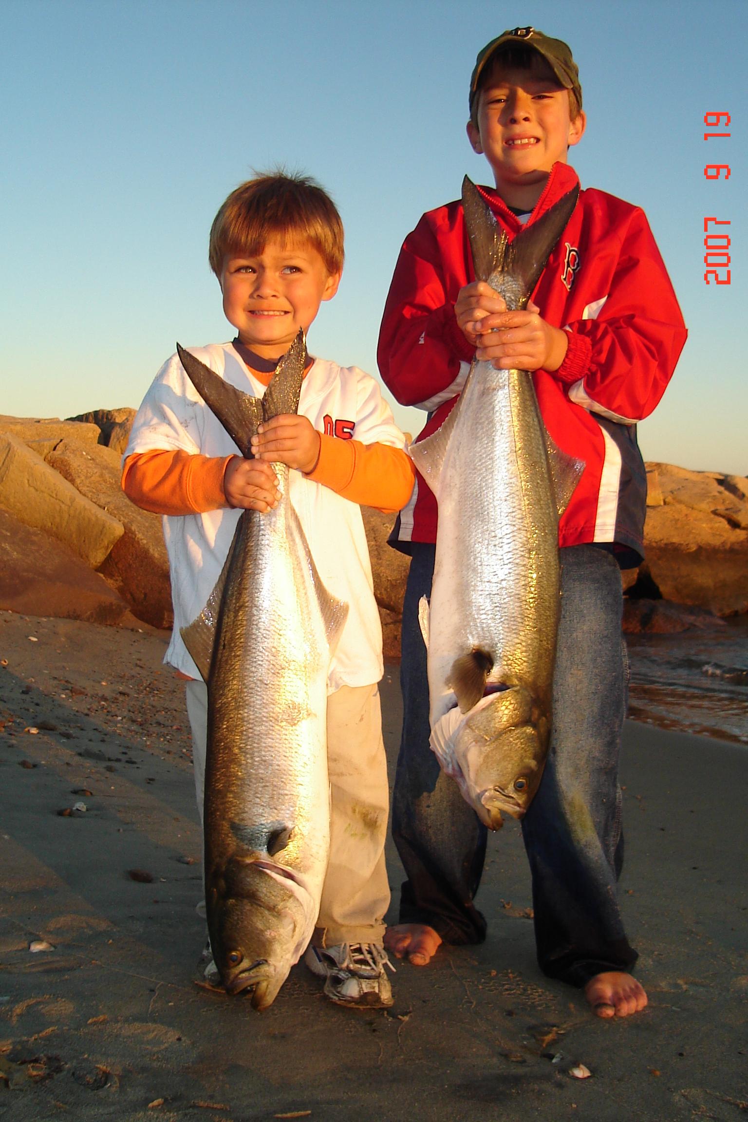 CT Beach Bluefish