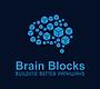 Brain Blocks Building Better Pathways NE