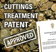 Treatment patent approved v2.jpg